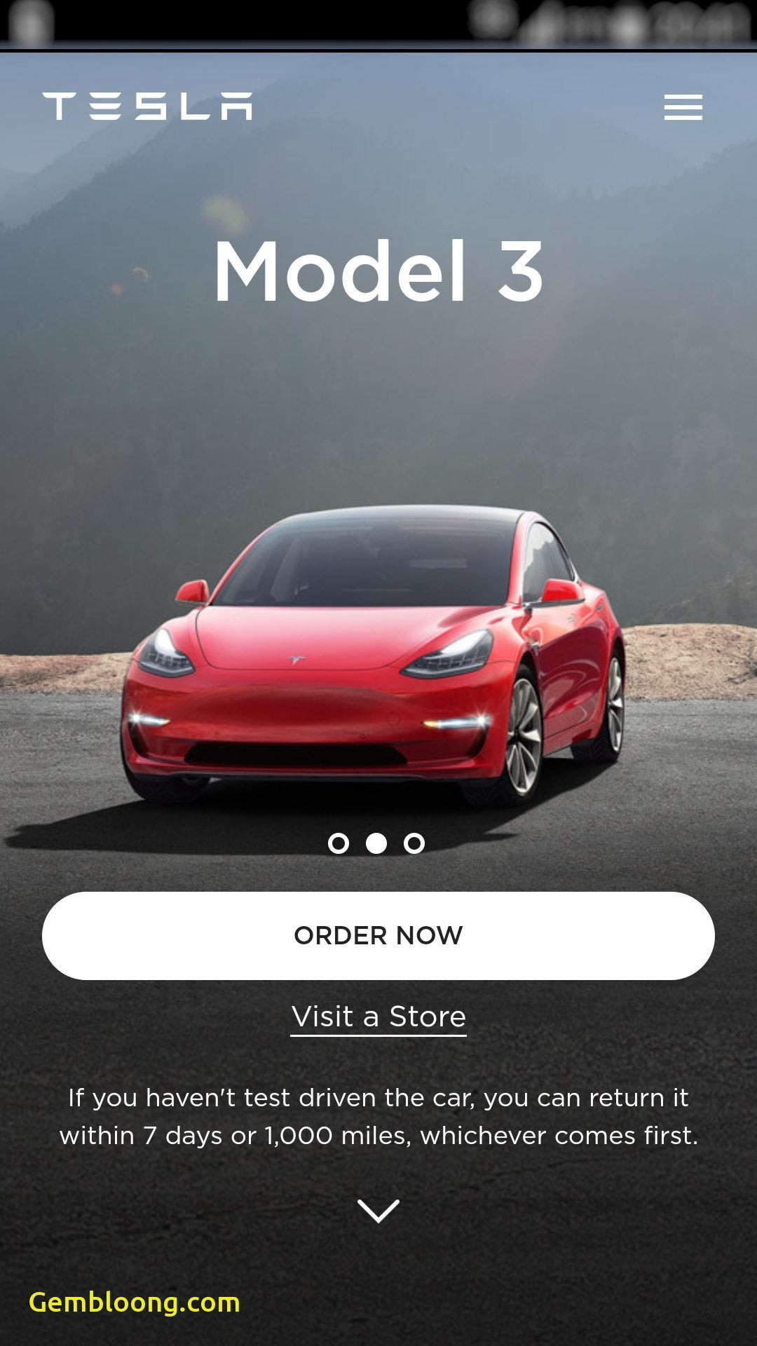 Tesla Ordering via Smartphone