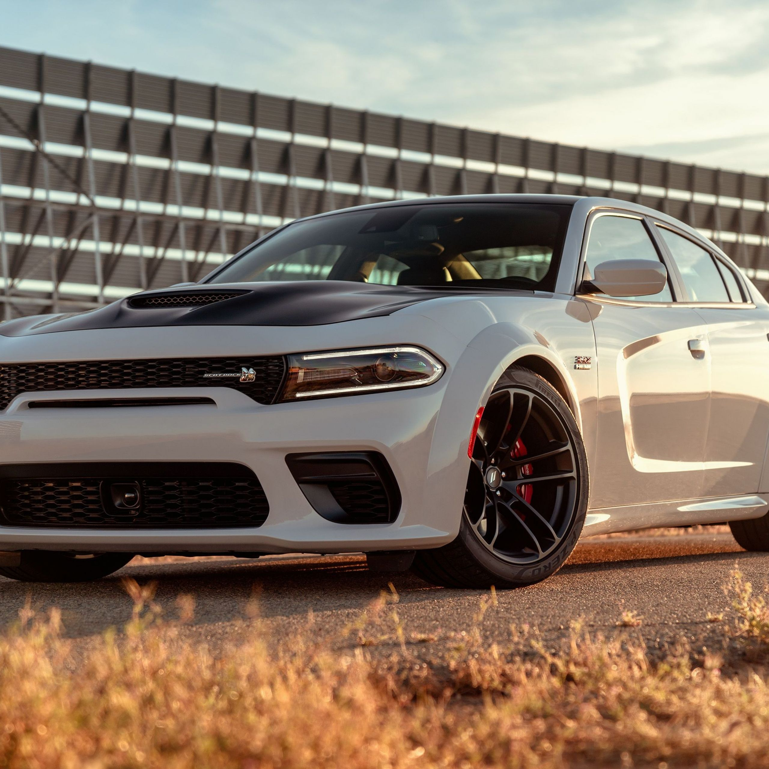 2010 Dodge Charger Elegant 2020 Dodge Charger Review Pricing and Specs