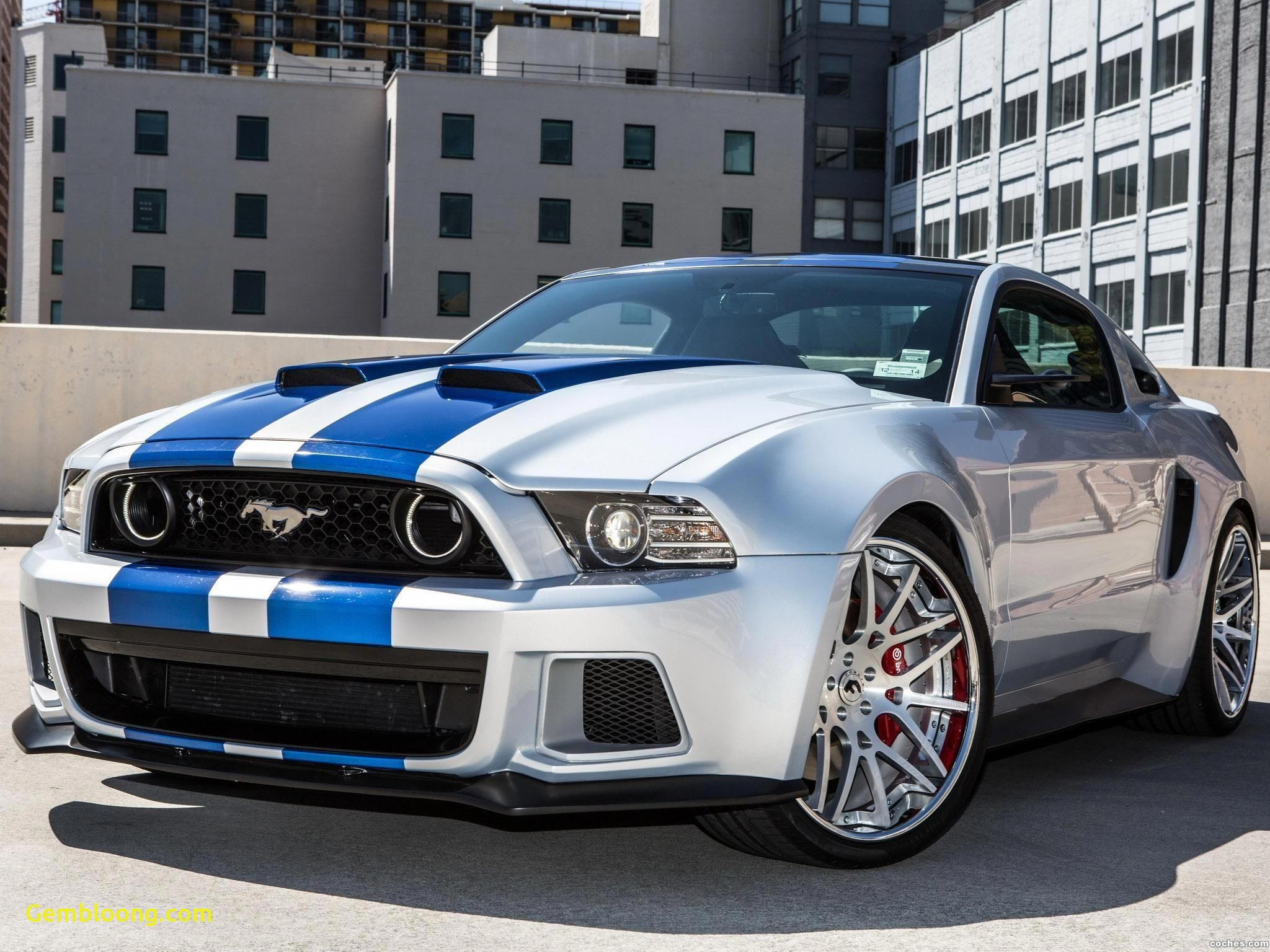 2013 ford Mustang Gt Awesome ford Mustang Hero Custom 2013 Americanmusclecarsford
