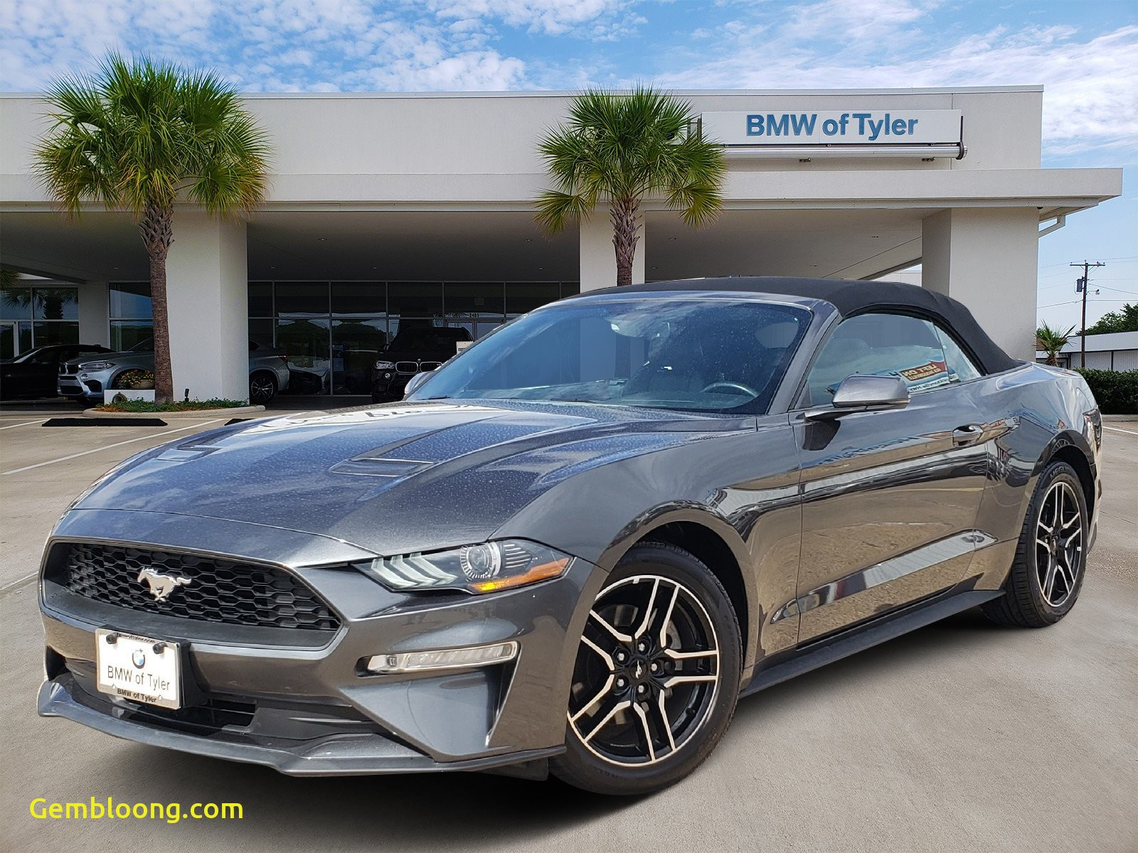 2015 ford Mustang Ecoboost Luxury Pre Owned 2019 ford Mustang Ecoboost Premium Rwd Convertible