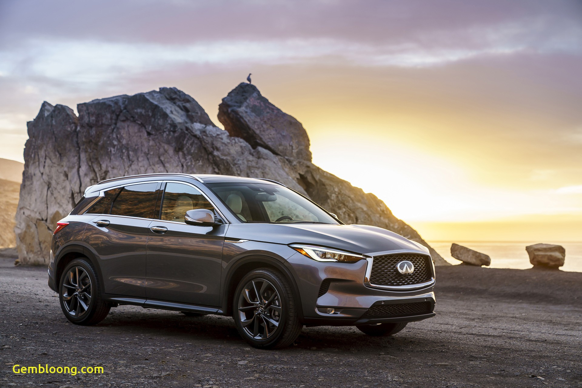Infiniti Truck Unique New and Used Infiniti Qx50 Prices S Reviews Specs