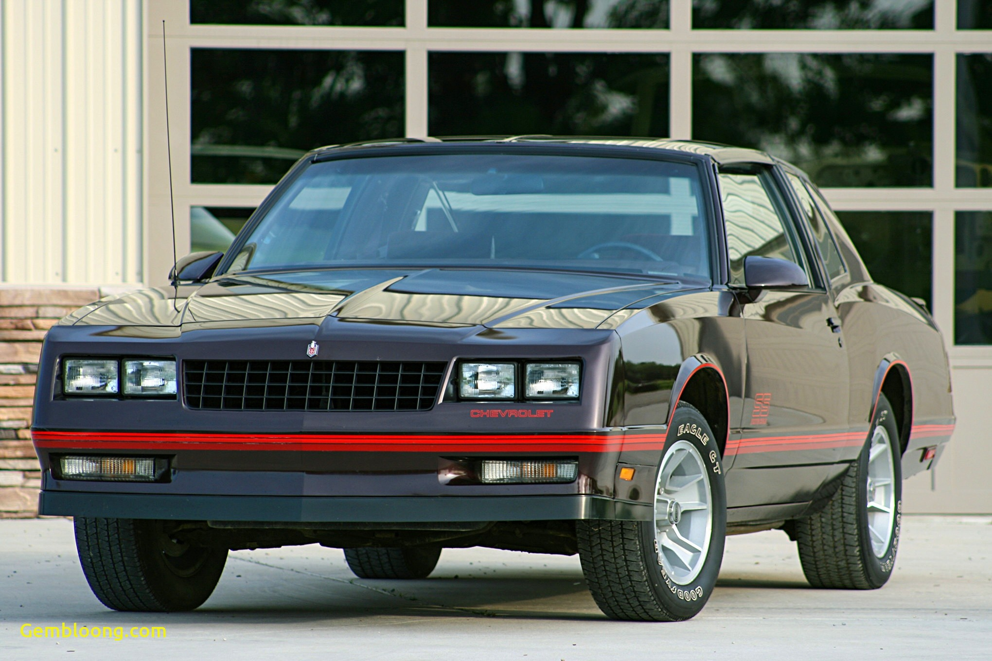 Muscle Cars for Sale Elegant 1980 Muscle Cars