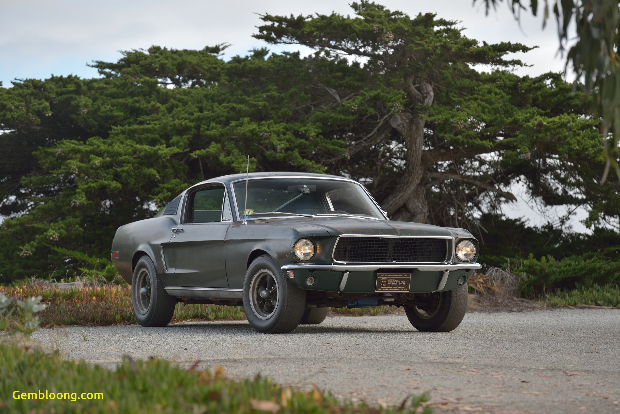Muscle Cars for Sale Elegant Mustang From Famed Bullitt Car Chase Heads to Auction