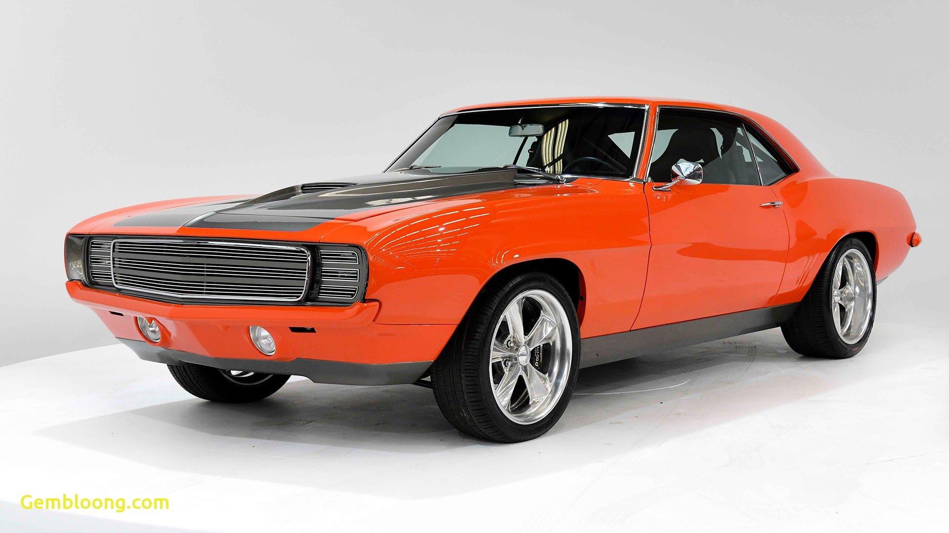 Muscle Cars for Sale Lovely Muscle Cars and More Must Go In Australian Museum Sale This