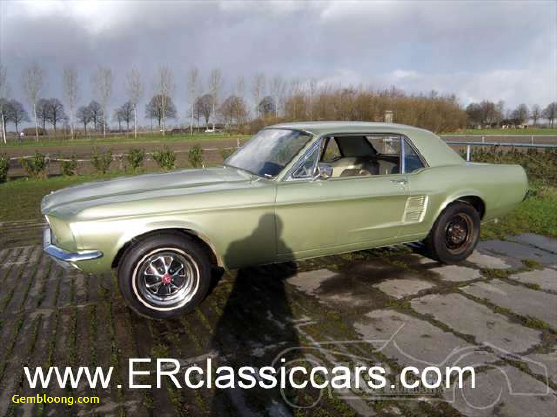 Muscle Cars for Sale New ford Classic Cars