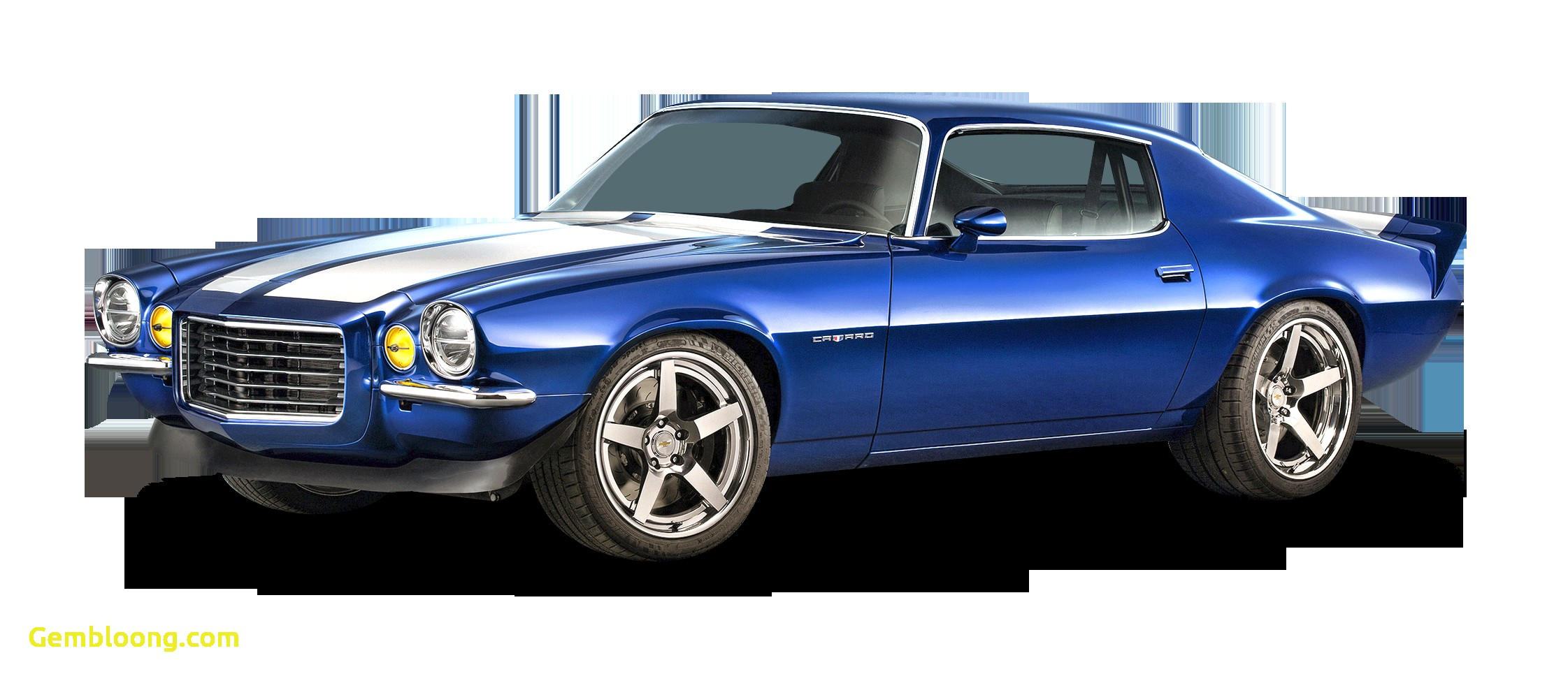 Muscle Cars for Sale New Muscle Cars Sa – Muscle Cars Sa