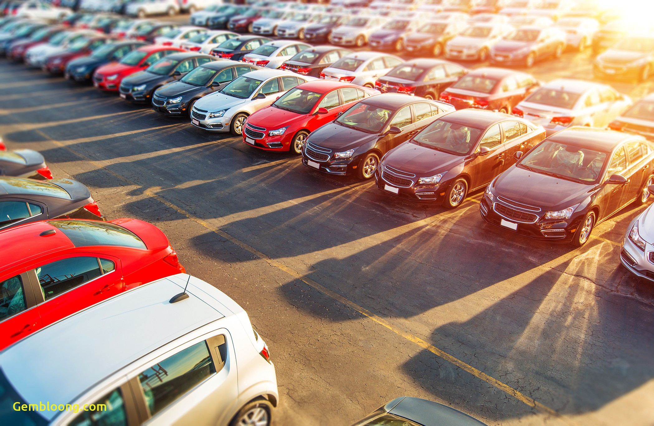 Rental Cars for Sale Near Me Fresh How to Negotiate Car Price at A Dealership Money