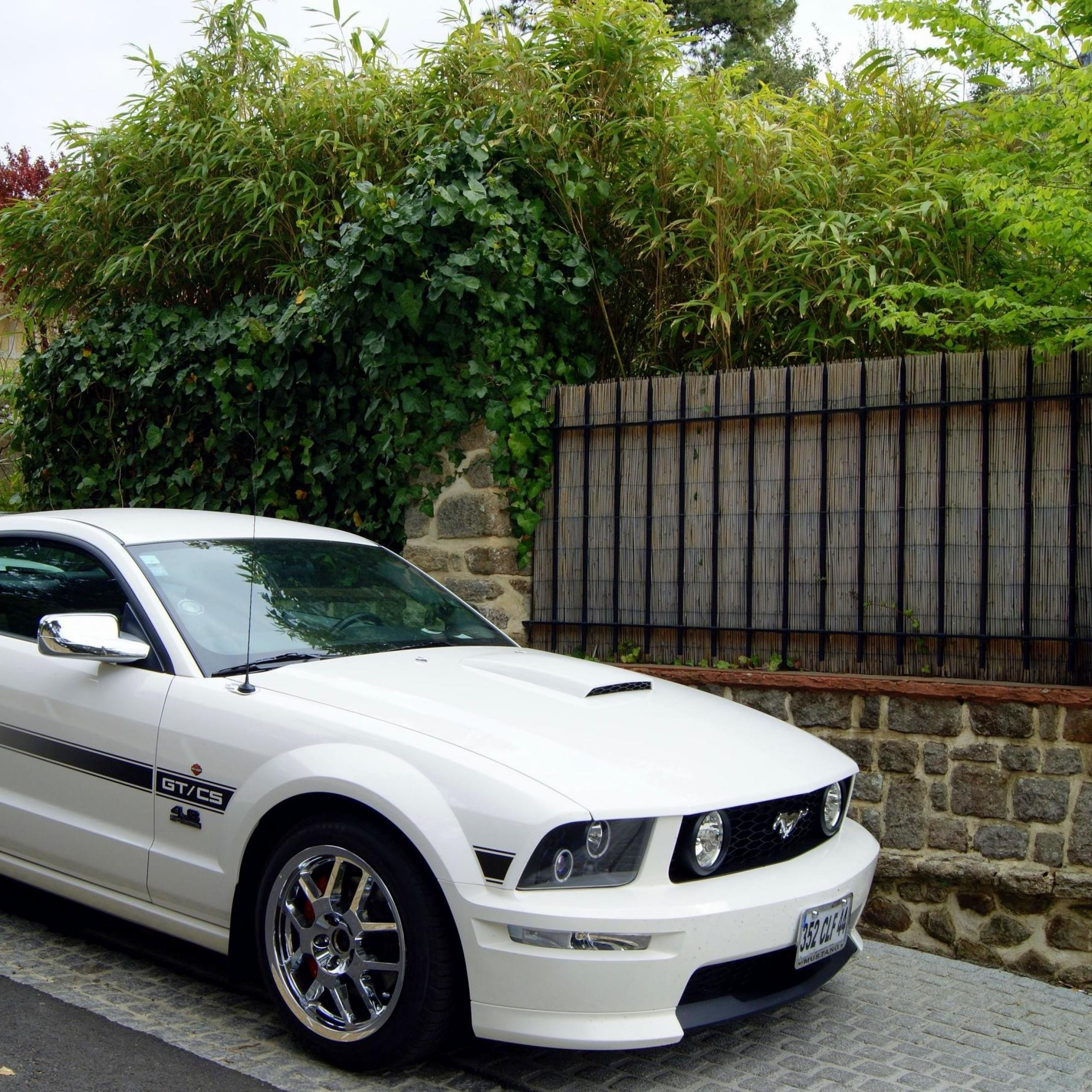 2012 ford Mustang Gt Awesome ford Mustang Gt 4 6 High Performance 9 April 2012 Autogespot