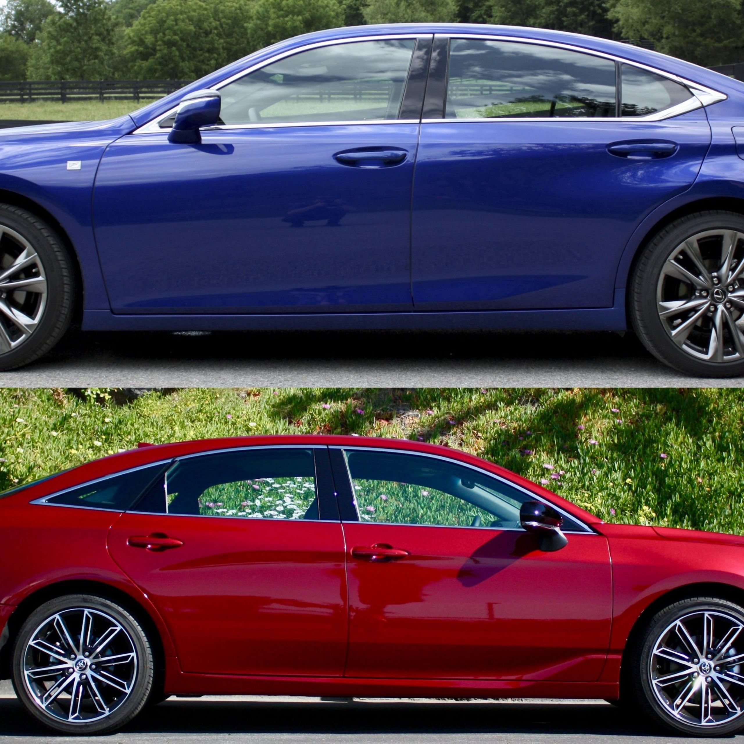 2015 toyota Avalon Lovely 2019 Lexus Es Versus 2019 toyota Avalon which is Better