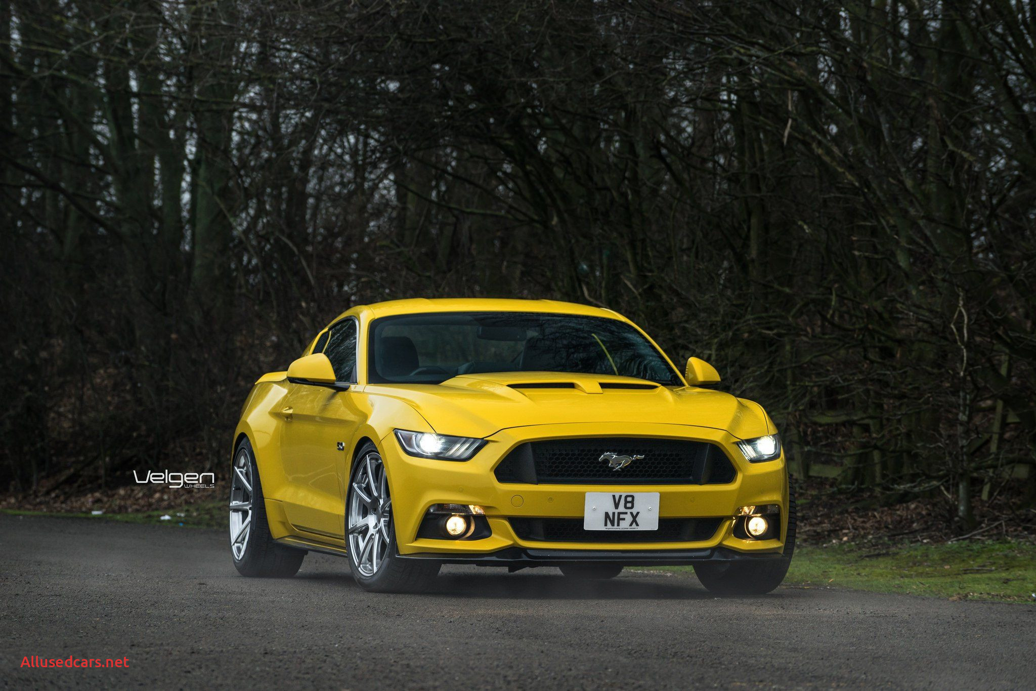 2016 ford Mustang Elegant Yellow ford Mustang Goes In Style with Custom Accessories