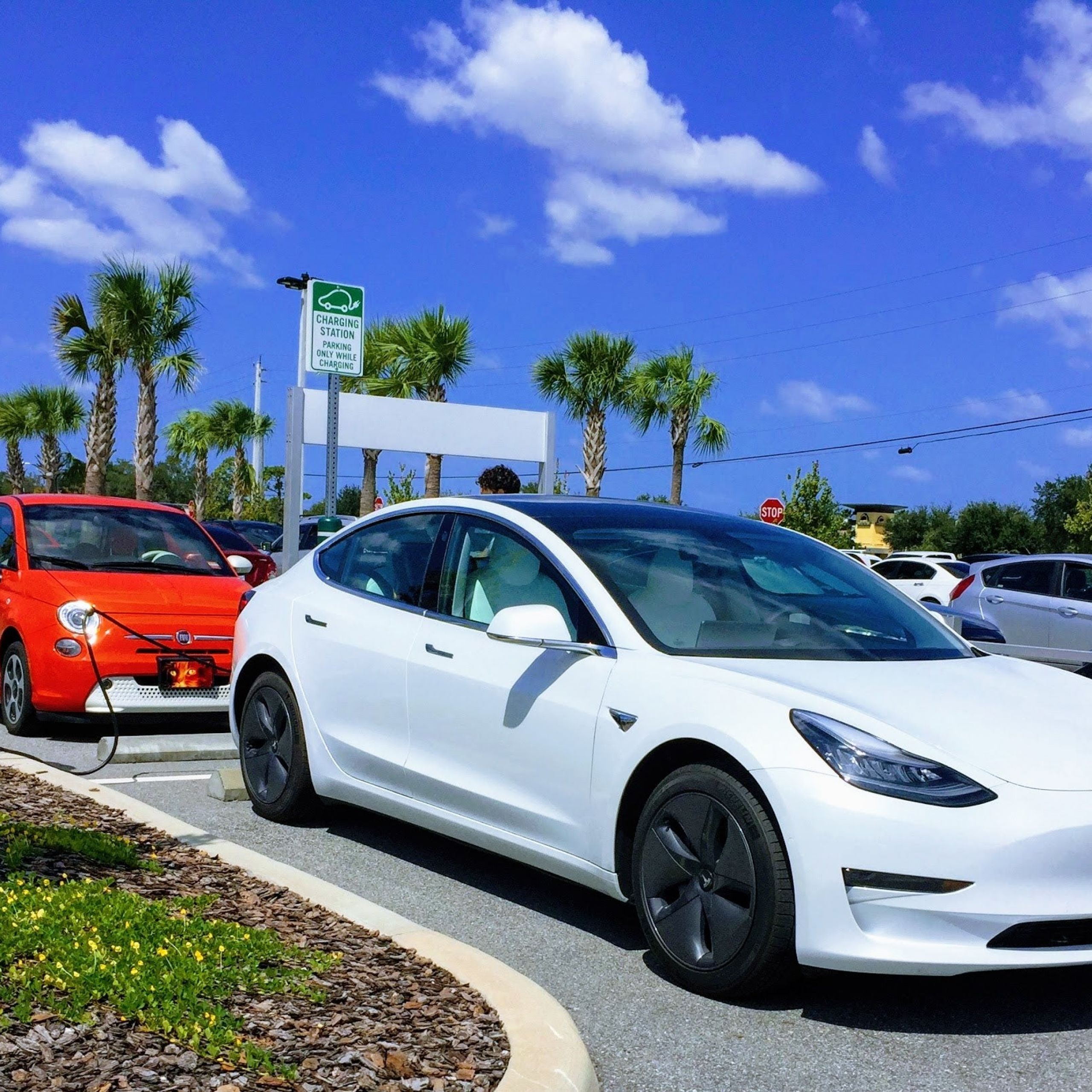 Tesla Model 3 white Fiat 500e red charging ChargePoint Station Whole Foods Zach Shahan CleanTechnica