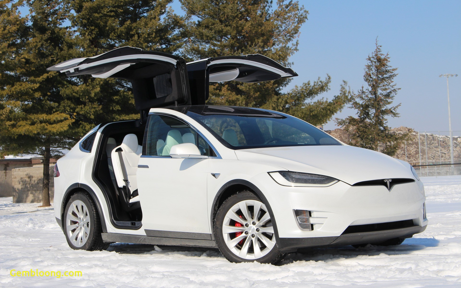 Tesla X Lovely 2018 Tesla Model X Space Age Family Muting the Car Guide