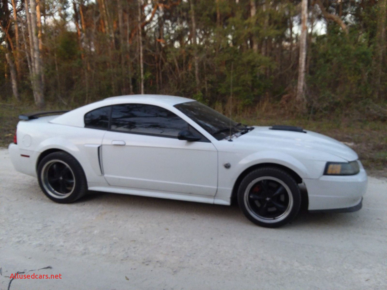 2004 Mustang Cobra Lovely 2004 ford Mustang Gt Us ford Mustang Pinterest