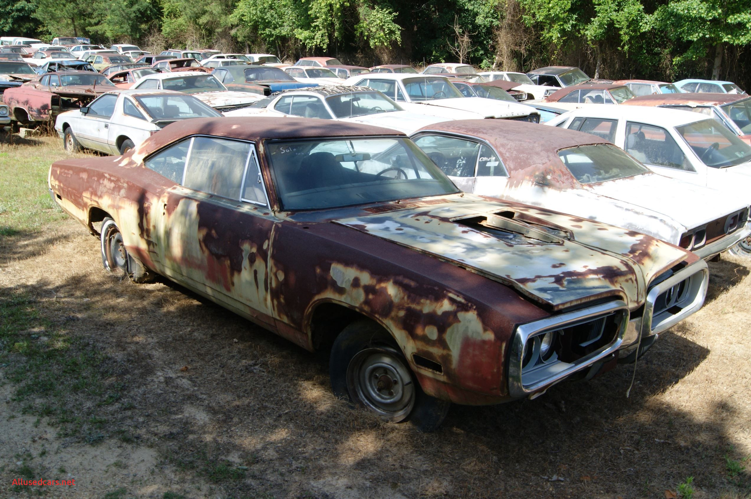 Junkyard Cars for Sale Near Me Best Of Mopar Graveyard Hidden In the Carolina Hills