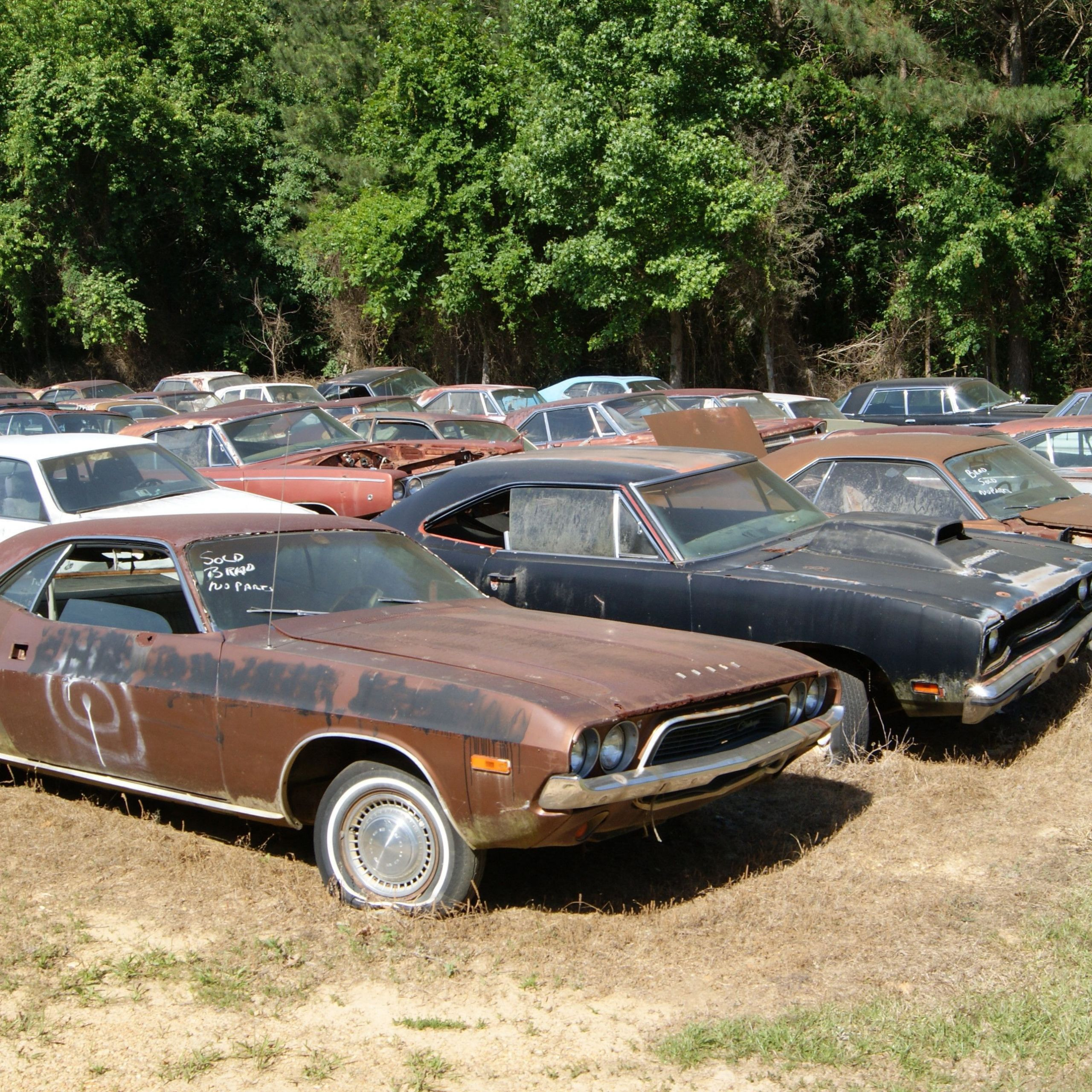 Graveyard Carz Used Cars for Sale Inspirational Inspirational Graveyard Carz Used Cars for Sale