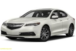 Inspirational 2010 Acura Tl