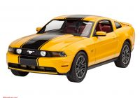 2010 ford Mustang Elegant 2010 ford Mustang Gt