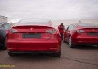 2019 Tesla Model 3 Best Of First Batch Of Tesla Model 3 for China Reaches Tianjin Port