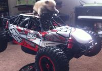 Auto Maxx Inspirational 1 5 Scale Rc 1 36 Scale Puppy