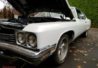Buick Car Lovely Buick Electra 1972 for Sale Exterior Color White