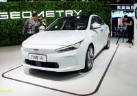 Electric Cars Sale Luxury Ev Subsidy Cuts Give Chinese Automakers More Reason to Fret