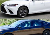 How Many Tesla sold In 2019 Lovely 2019 Lexus Es Versus 2019 toyota Avalon which is Better