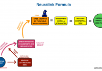 Is Tesla Profitable Awesome A Quick Guide to Elon Musk S New Brain Implant Pany