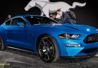 Mustang 2020 Fresh 2020 ford Mustang 2 3l High Performance Package Has 330 Hp