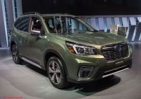 Subaru forester Fresh 10 Things You Don T Know About the All New 2019 Subaru