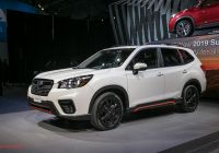 Subaru forester Inspirational 2019 Subaru forester First Look Ready for the Cr V and Rav4
