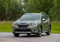 Subaru forester New 2020 Subaru forester Eboxer News and Information