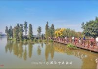 Tesla Raleigh New Haizu Wetland Guangzhou 2020 All You Need to Know before