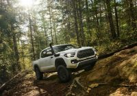 Used toyota Tacoma Fresh 2020 toyota Ta A Review Pricing and Specs