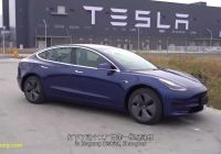 What Tesla Made for Us Beautiful is the Chinese Tesla Model 3 Better Than the U S Made Version